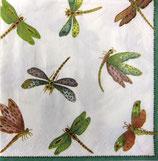 A中 C603 *9860L Dragonflies