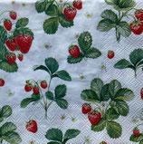 SP小5 F13 112137 Strawberry Pattern