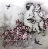 XS中 X34 076300 Angelic Chic