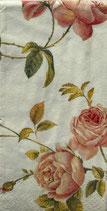 224-3 PT724060 New Rambling Rose
