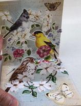 3Dカード PS1092  「Garden Bird Trio」