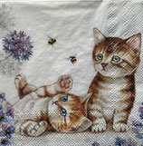 SP小5 F107 12512885 Cats and Bees