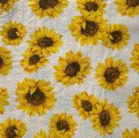 SI18中 F52  191944  Sunflower Garden