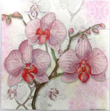 SI中1 F42 13307700 Orchids Lilac
