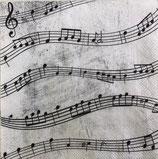 SP小4 F125 C 822300    Music Notes