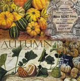 SP小5 F94 12513625 Autumn Pumpkins