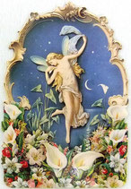 PS Greeting Cards CA-225-125 Moonlight Faerie E