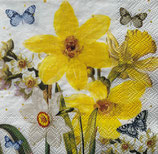SP小5 F35  112117    Watercoler Narcissus