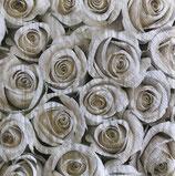 SI14中 F132 SLOG031801  Elegant White Roses