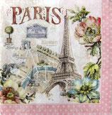 SI12中 F134 414-PARF Paris Forever