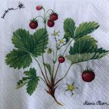 SI15中 F66 177070 Wild Strawberry