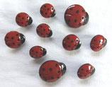 ボタン 1134 Ladybugs