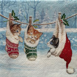X'mas6中 X38 33314800 Kitten in winterland