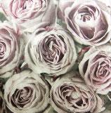 SAGEN1 小 S502 *SGC-86002 Pink Roses 中サイズもあり