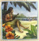 A小 F80 1364 Vintage Hawaii