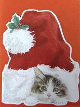 Carol Wilson Christmas *CRGBX185 ねことサンタの帽子 赤封筒付   6