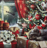 X'mas6中 X33 L892200 Cats  is wating for Christmas