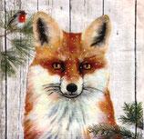 SI10中 F89 3332104 Red Fox Park