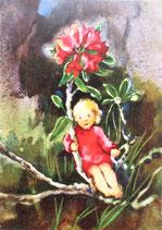MWPC *45-VD8188-35「Little Alpind Rose」