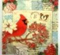 PS小 P03 53367 Cardinal Postcard