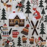 SPX小1 X45 193408 Winter  Cabin