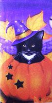 217 *12209320 Halloween Cat
