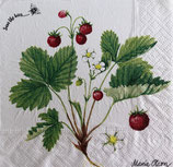 SP小5 F66 PD-192364 Wild Strawberry