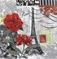 PS小 P01 53638 Belle France