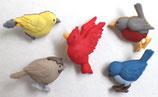 ボタン 6956 Feathered Friends