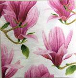 A中 C601 *12390L Mystical magnolia