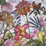 SI18中 F95  340185 Exotic Garden