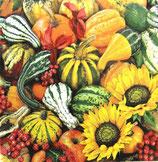 ハロウイン中 F66 012001 Sonnenblume+Kurbisse
