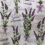 SI14中 F60 SDOG025801 Lavender Season in Provence