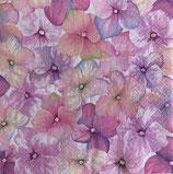 SI14中 F06 SDOG025001   Pink Hydrangea Pattern