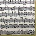 A中 F50 *11020L Musica