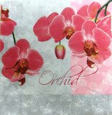 SI中3 F42 SLOG-010001  Orchid
