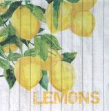 SI10中 F111 1332392 Harvest Lemons