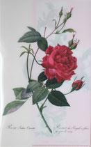 クリアファイル「ルドゥーテのバラ」*P004-03