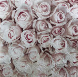 SP小4 F41 12511450    Pastel Roses