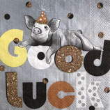 SP小5 F77 C894545  Good Luck Pig grey