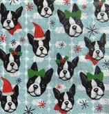 PS小 P06 95850 Boston Terriers