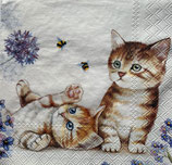 SI17中 F108-1 13312885 Cats and Bees
