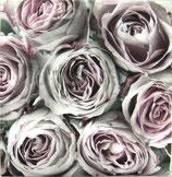SAGEN1中 S502 *SG-2067 Pink Roses ある分のみで終了