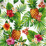 SI10中 F95 340117 Pineappies & Palmleaves