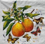 SI17中 F11 191887 Fruity Butterflies