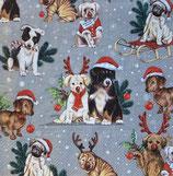 X'mas6中 X41 L922345 Dogs Celebration  grey
