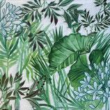 SI18中 F96 75375 Tropical Plants