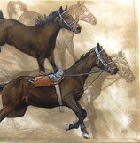 SI中2 F10 DL-018501 Horse