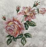 SI18中 F29 SLOG051801 Vintage Roses