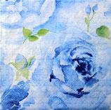 SI11中 F57 340221 Rose Delicada Blue
